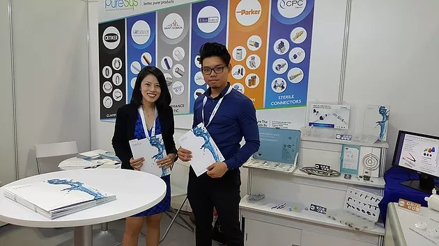 PureSys at the SIWW 2016